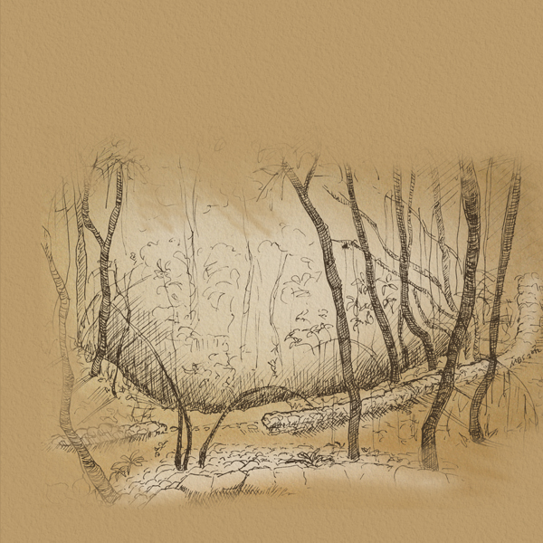 Landscape sketches